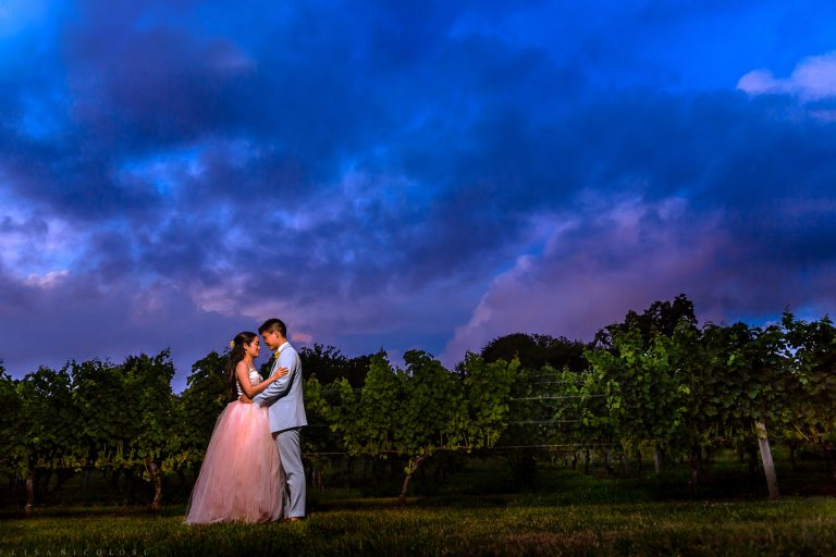 Read more about the article Wedding at The Old Field Vineyard