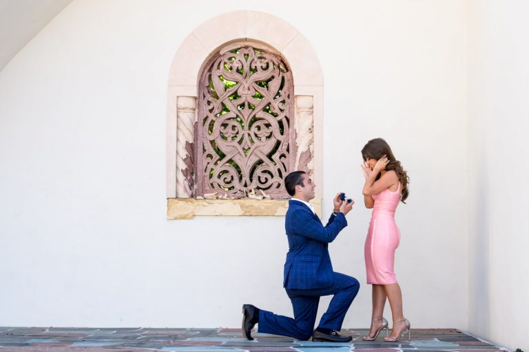 Engagement Proposal at Vanderbilt Museum